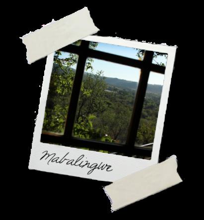 Maba window