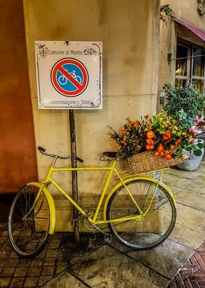 Monte bike 1 LR (1 of 1)