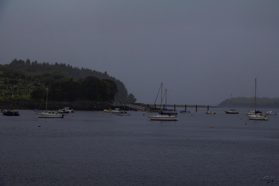 IMG_3237 LR (1 of 1) Bantry Bay